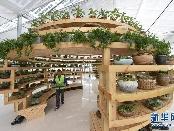 福建:现代高效农业助力精准扶贫
